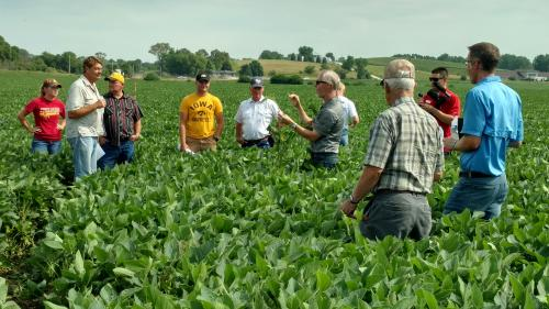 Harrison County Soybean Field Day
