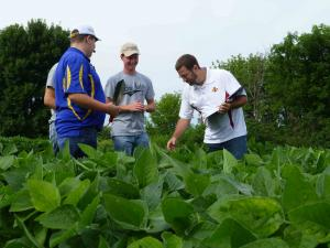 scouting soybean plants during the crop scouting competition