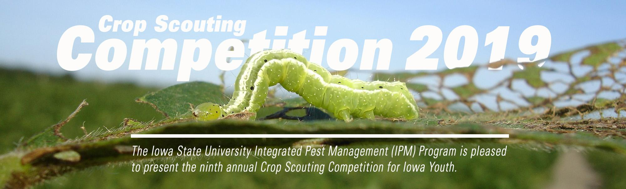 https://www.ipm.iastate.edu/crop-scouting-competition-iowa-youth-2019