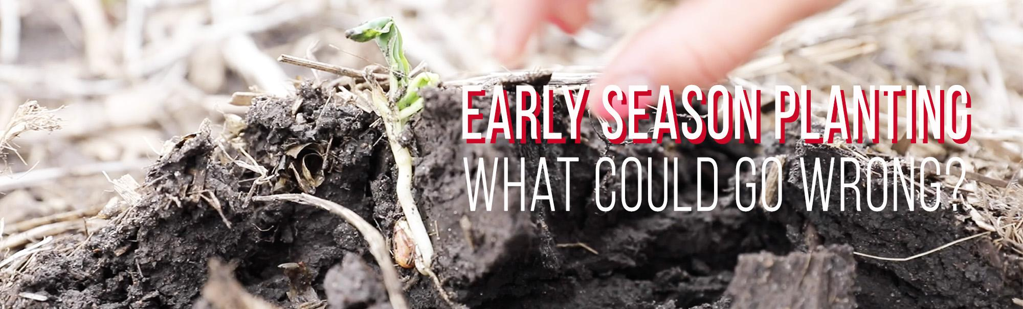 Early Season Planting (What Could Go Wrong?)