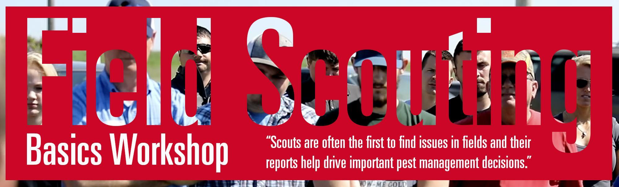 Field Scouting Basics Workshop