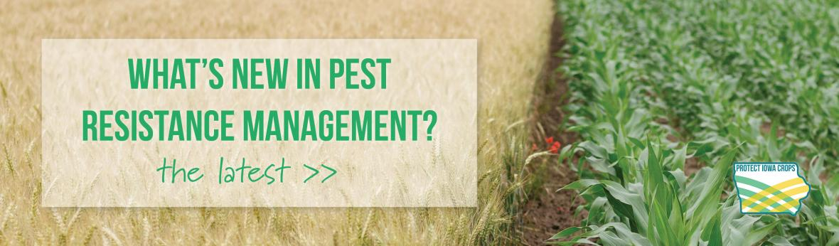 Iowa Pest Resistance Management Program News
