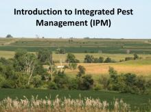 Intro to IPM photo