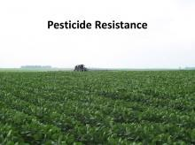 Pesticide Resistance tutorial photo