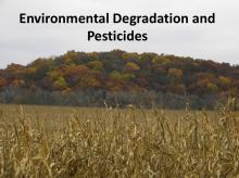 Environmental Degradation and Pesticides tutorial photo